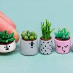 Comment faire des plantes succulentes en fimo